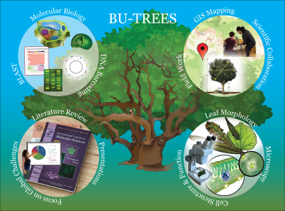 BU Trees: Modern Concepts in Biosciences