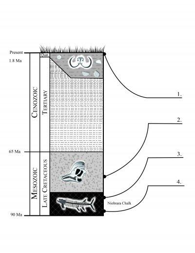 Geochronology: Three Fossils