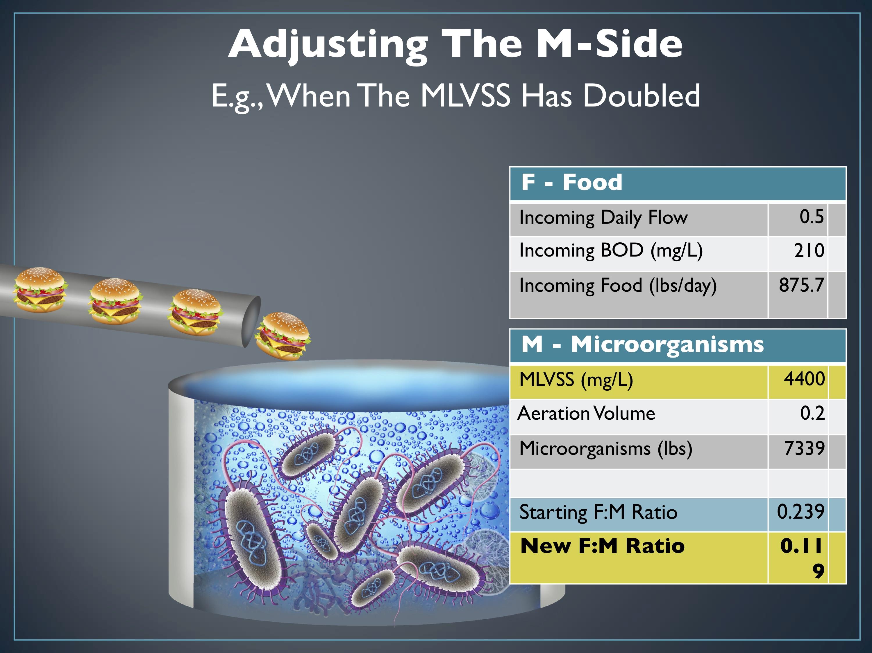 Aquafix Webinar Series: Overcoming Low Food and Low F:M in Waste Water Slide 12
